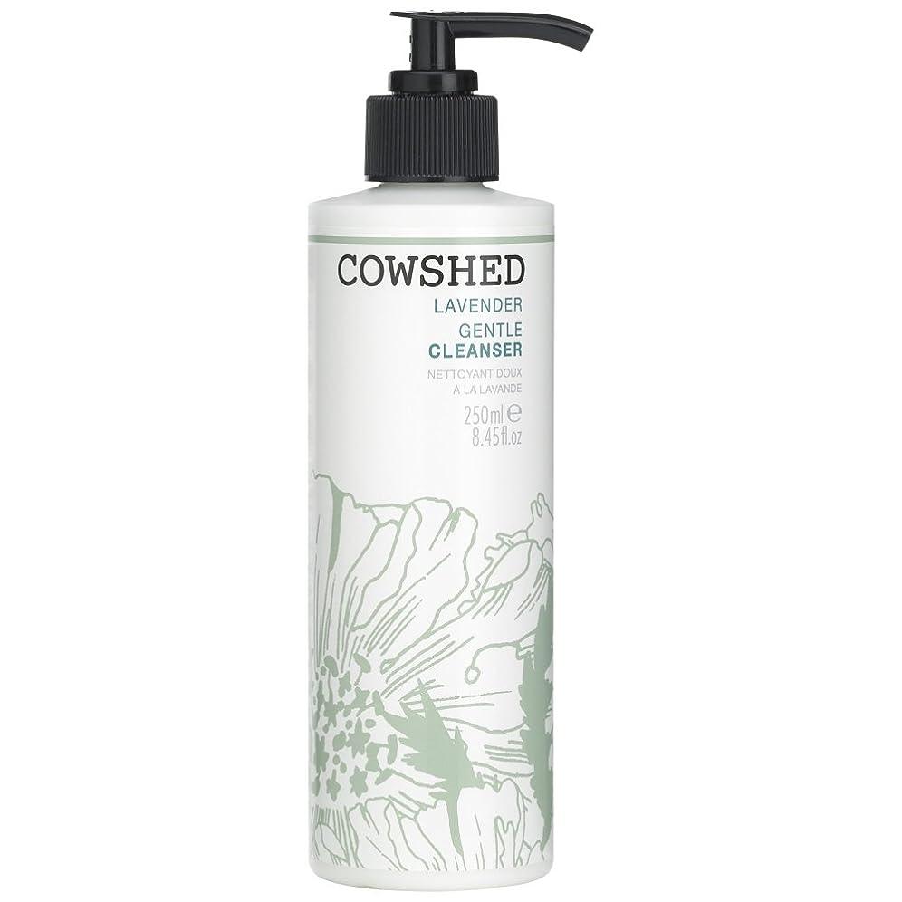 段落考えうるさい牛舎ラベンダージェントルクレンザー、250ミリリットル (Cowshed) (x2) - Cowshed Lavender Gentle Cleanser, 250ml (Pack of 2) [並行輸入品]