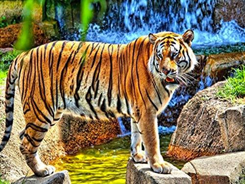 Animal diamante pintura Tigre diamante bordado Animal 5D DIY mosaico de diamantes de imitación decoración del hogar Kit de punto de cruz A9 60x80cm