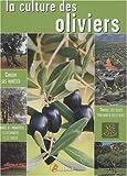 La culture des oliviers