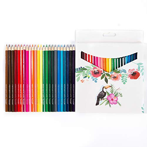 24-Color Painting Colored Pencils are Very Suitable for Multi-Color Art Painting for Adults and Children.