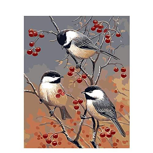 DIY pintura al óleo de lienzo Pájaro de árbol frutal - Pintura por Números La pintura al óleo artística de bricolaje sobre lienzo es un regalo de creatividad - 40 x 50 CM (Sin Marco)