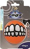 Rogz Dog Chew and Fetch Ball, Large