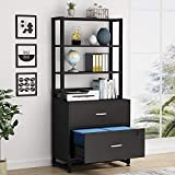 Tribesigns 2 Drawer Vertical File Cabinet with Lock & Bookshelf, Letter Size Large Modern Filing Cabinet Printer Stand with Open Storage Shelves for Home Office, Black