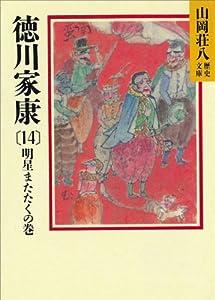 徳川家康 14巻 表紙画像