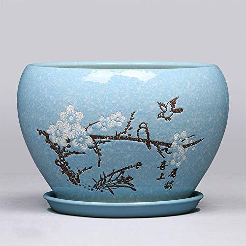 Macetas, cerámica y bandejas, están diseñados para crear una casa redonda de orquídeas con eneldo verde simple.