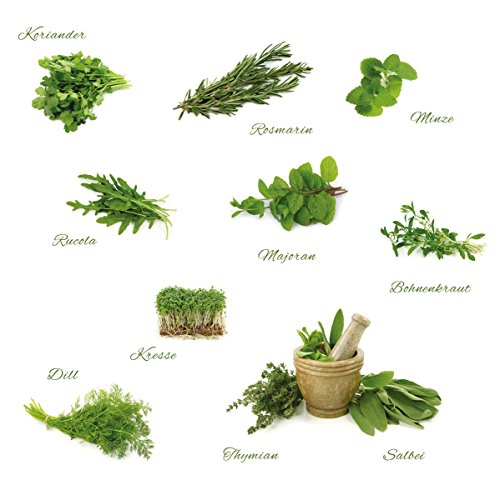 Eurographics Different Herbs 50x70 DecoSticker, Sticker, grün, 70x50x0.4 cm
