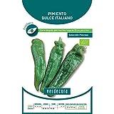 100 semillas F/ácil Cultivo Semillas de piment/ón chile jard/ín de DIY de plantas hort/ícolas paquete siembra gigante pimienta dulce