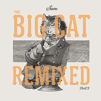 The Big Cat Remixed Pt. 2
