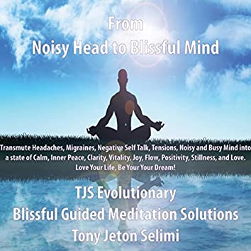 From Noisy Head to Blissful Mind