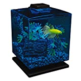 GloFish Aquarium Kit 1.5 Gallons, Easy Setup and Maintenance, Perfect Starter Tank, Model:29236