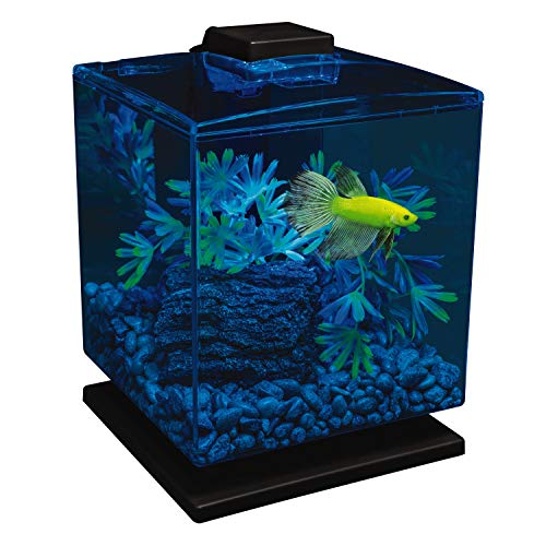 GloFish Tetra 29236 Aquarium Kit, 1.5-Gallon