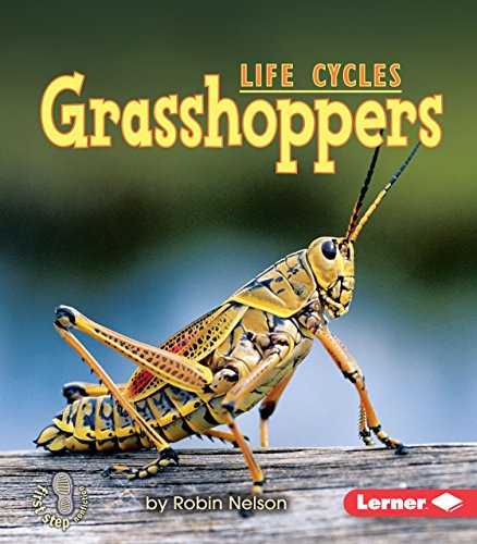 Grasshoppers (First Step Nonfiction)