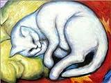 Poster 40 x 30 cm: Die weiße Katze (Kater auf gelbem