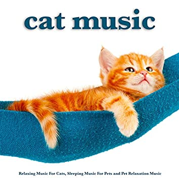 Cat Music: Relaxing Music For Cats, Sleeping Music For Pets and Pet Relaxation Music