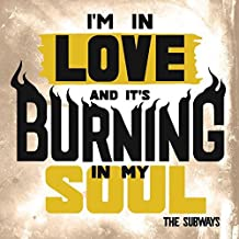 I'm In Love And It's Burning In My Soul [Vinilo]
