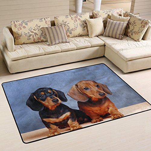 coosun perro Teckel área alfombra alfombra alfombra de suelo antideslizante Doormats para salón o dormitorio 72x 48cm, tela, multicolor, 36 x 24 inch