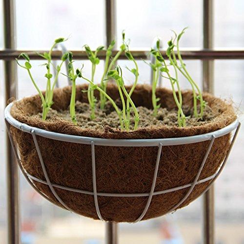Porte-fleurs Balustrades de balcon clôturant la plantation de pots de fleurs de légumes, étagères de pots de fleurs suspendus, crémaillère de carotte verte charnue Support de fleurs (Couleur : Blanc)