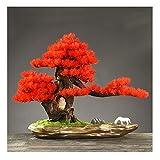 jbshop Bonsai Plant Simulación Bonsai Belledec Pine Adornos de Pino Sala de Estar Pórtico Decoración Artesanía Apertura Planta de Regalo Fake Plant Decoration Plantas (Color : D)