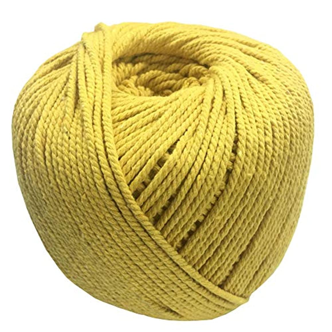 Natural Cotton Cord Rope DIY Macrame Cord Colored Cotton Rope Wall Hanging Plant Hanger Craft Making Knitting Rope Home Decoration 13 Colors 3mm200m/4mm110m (3mm, Yellow)