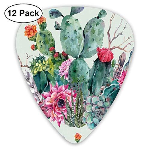 Guitar Picks Frühlingsgarten mit Boho-Stil Bouquet von dornigen Pflanzen Blüten Pfeile Federn, für Bass Electric Acoustic Guitars-12 Pack