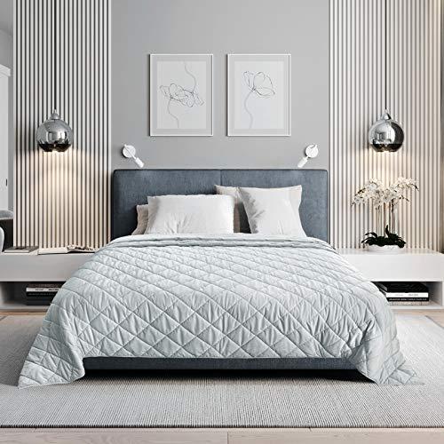 WOLTU Tagesdecke Bettüberwurf Microfaser Flauschige Kuscheldecke mit Cashmere Feeling, Steppdecke Kariert Wohndecke Doppelbett unterfüttert und gesteppt, 170x210cm, Hellgrau