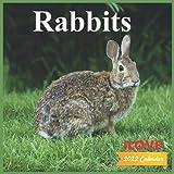 Ilove Rabbits Calendar 2022: official Rabbits calendar 2022,12 months, bunny Calendar 2022 , Square Calendar
