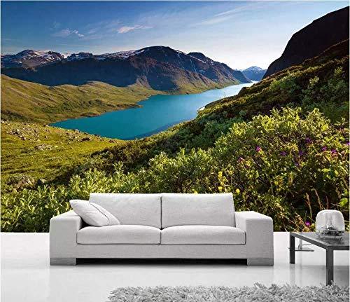 Aangepaste 3D fotobehang grote Fresko muurschildering foto Noorwegen lente renaissance landschap Scandinavische landschap achtergrond muurschildering (W)300x(H)210cm (W)300x(h)210cm
