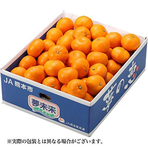 夢の恵 プレミアムみかん 青秀 2Lサイズ 4.5kg 糖度12度以上 JA熊本市 夢未来  お歳暮 ギフト クリスマス 年末 みかん 蜜柑 ミカン