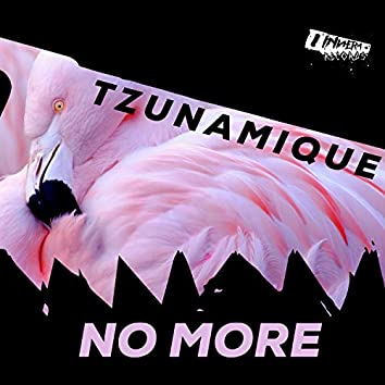 No More (Extended Mix)