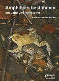 Amphibien bestimmen: am Land und im Wasser (Supplemente der Zeitschrift für Feldherpetologie)