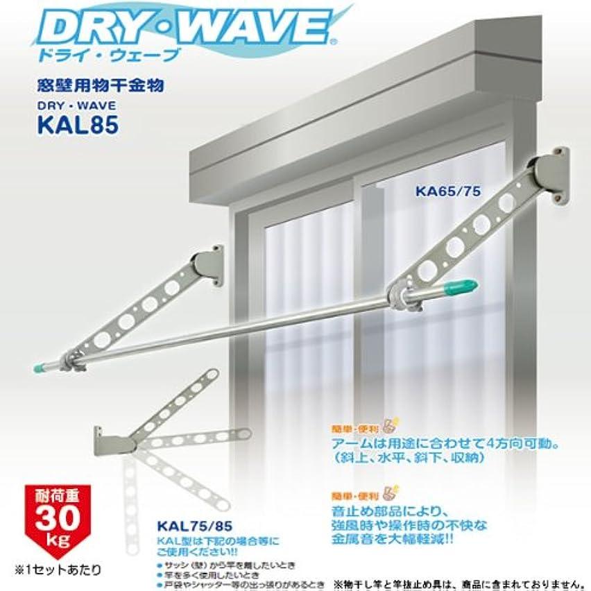 舌な祖先部分的DRY?WAVE(ドライ?ウェーブ) KAL85 窓壁用物干金物 ホワイト(W)