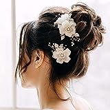AW BRIDAL Bridal Hair Clips 2 Pcs Flower Wedding Hair Comb Pins Wedding Hair Accessories for Bride (Gold)