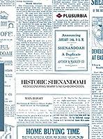 Historic Shenandoah: Rediscovering Miami's Neighborhoods (Main Report)