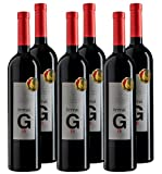 TERRAI G15 - Vino Tinto - 15 meses en Barrica de Roble Francés y Americano - Añada 2015 - Caja de 6 botellas