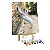 Paint by Numbers DIY French Bulldog Puppy Stretching in The Morning on a Wall Canvas Painting Set with Acrylic Pigment Paintbrush Wooden Easel for Adults and Children Artwork 16