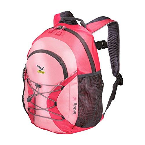 Salewa Unisex Kinder Wanderrucksack Siddy 12, Paradise Pink/Strawberry Pink, 33 x 25 x 20 cm, 12 Liter 00-0000003264