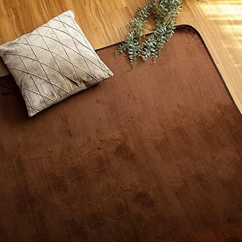 アイリスプラザ 洗えるラグ 防ダニ フランネル ラグカーペット 185×185cm 心地良いさらフワ触感 滑り止め付き ブラウン