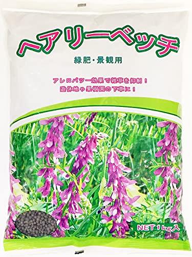 ヘアリーベッチ種子 1kg