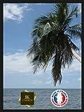 Inconnu RK Cadres–Cadre en Bois pour Poster - Épaisseur: 2cm - Couleur: Noir 40 x 60cm Noir
