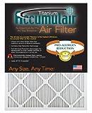 Accumulair Titanium 14x30x1 (13.5x29.5) High Efficiency Allergen Reduction Air Filter/Furnace Filter