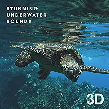 Stunning Underwater Sounds 3D: Nature Relaxation