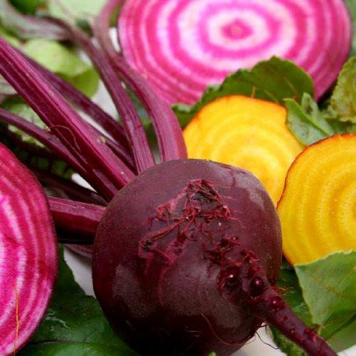 Beets Gourmet Blend Certified Organic Heirloom Seeds 100 Seeds