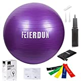 FEIERDUN Exercise Ball Thick Anti-Burst Yoga Stability Ball (55cm...