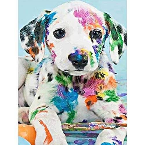 DIY 5D Diamond Painting Kits for Adults Full Drill Diamond Painting Crystal Diamond Arts Crafts for Home Wall Decor - Dalmatian Dog (16 x 12 in)