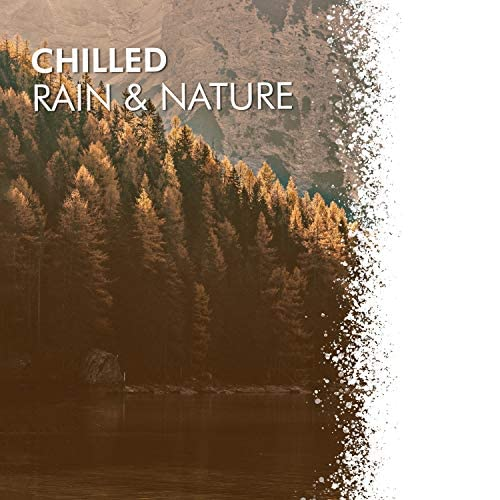 Relax Ambience & Ambient Forest