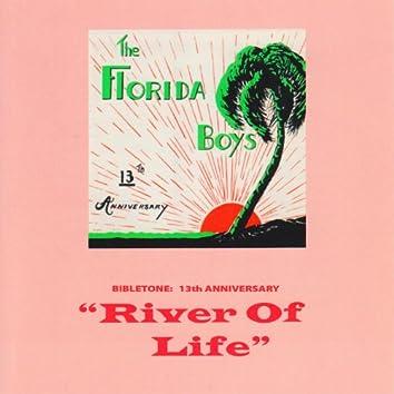 Bibletone: River of Life (13th Anniversary)