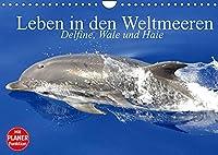Leben in den Weltmeeren. Delfine, Wale und Haie (Wandkalender 2022 DIN A4 quer): Gleiten und Leben in den Ozeanen der Welt (Geburtstagskalender, 14 Seiten )