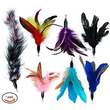 EcoCity Cat Wand Feather Refills Interactive Cat Kitten Wands include 6 pieces Replacement Feathers 1 Soft Furry Tail (7 pieces)