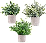 Cneng 3 Plantas Artificiales Mini en Maceta, Plantas Artificiales en Maceta, Pequeñas para Hogar, Escritorio, Cocina, Baño, Jardín, Decoración