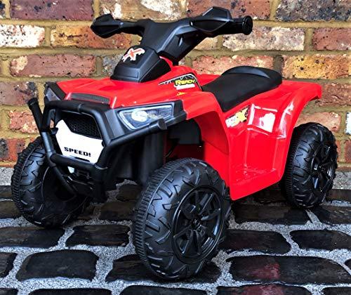 Epic Play Ltd Kids My First Mini 6v Ride on Quad Bike -
